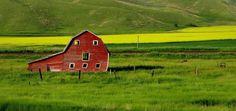 """The Old Red Barn"" by Janet Wachter https://gurushots.com/11dpechs/photos?tc=2f714573798c4445d3810149174a9e47"