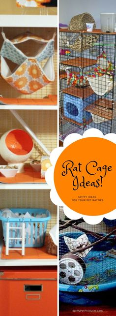 74 best rat cage images rat hammock rat cage pet rats rh pinterest com