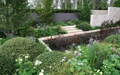 DO TONS OF BOXWOOD TO MAKE ELEGANT AND LESS COTTAGE WITH NO STRUCTRE