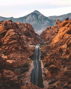 "rustic-bones: "" (at Valley of Fire State Park) """