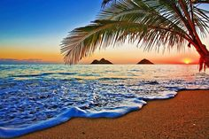 i will love to visit Hawaii, bacause their country is where my paradise lives (my dreams)