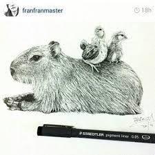 coloring pages capybara as pets - photo#33
