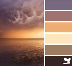 These colors are going to be everywhere in the next year. We're seeing lots of purple and warm, cream tones for 2014 weddings.