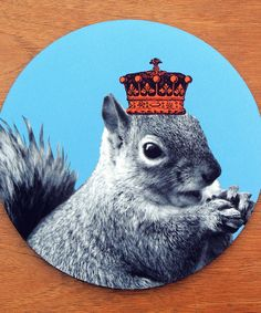 Look at this Squirrels Rule Mouse Pad on #zulily today!