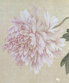 技法圖典| 牡丹、桃杏、茶花、玉蘭