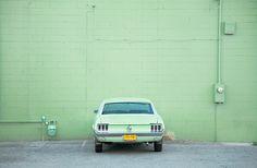 Matching Mustang