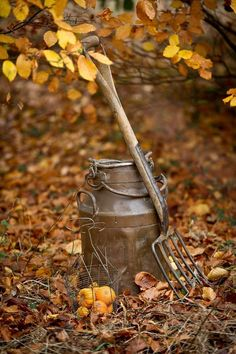 Gardening Autumn - beautymothernature: Vintage garden equipment in autumn by John Brown on Getty Images - With the arrival of rains and falling temperatures autumn is a perfect opportunity to make new plantations Autumn Day, Autumn Leaves, Flor Magnolia, Autumn Scenery, Milk Cans, Seasons Of The Year, Down On The Farm, Fall Pictures, Fall Harvest