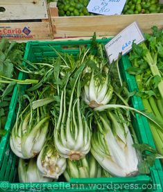 Catalogna Pasta, Celery, Vegetables, Asparagus, Seeds, Vegetable Recipes, Veggies, Pasta Recipes, Pasta Dishes