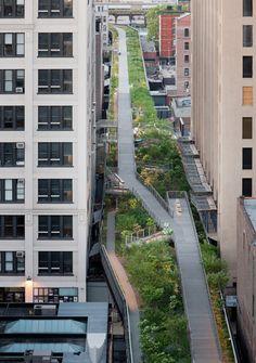 El nuevo ensanche del parque High Line permite pasear por zonas arboladas entre rascacielos, como en Falcone Flyover, entre las calles 25 y 27 oeste.