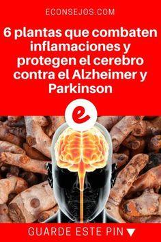 Parkinson español   6 plantas que combaten inflamaciones y protegen el cerebro contra el Alzheimer y Parkinson   Usted las conoce, pero no sabía que ellas podían hacer esto. Lea y sepa todo aquí.
