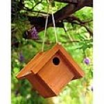 free plans woodworking resource from BetterHomesandGardens - birdhouse,bird house,wooden,outdoors,DIY instructions,free woodworking plans,do it yourself,woodworkers how to build,tools,networks,ideas,woodcrafts