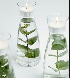 How to make floating greenery votives These floating greenery votive. - How to make floating greenery votives These floating greenery votives seem so fancy yet - Deco Champetre, Ideias Diy, Deco Floral, Floating Candles, Diy Candles, Candle Wax, Wedding Centerpieces, Quinceanera Centerpieces, Centerpiece Flowers