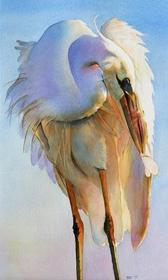 """Preening Egret"" watercolor by Sarah Buell Dowling.  An egret is any of several herons, most of which are white or buff, and several of which develop fine plumes during the breeding season."