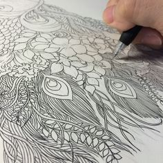 Floral Peacock on Behance