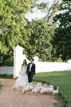 Photographer Portfolio, Celebrity Weddings, Dna, Summer Wedding, South Africa, Wedding Venues, Shots, Celebrities, Wedding Reception Venues