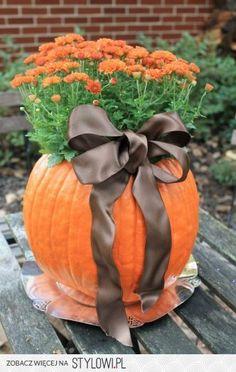 Mumkin Mumkin: There is always the classic pumpkin planter stand by. Grab a large pumpkin and 6 inch mum at the market. Carve and hollow the pumpkin. Plant the mum, pot and all, directly into the pumpkin planter. Diy Halloween, Holidays Halloween, Halloween Decorations, Thanksgiving Decorations, Autumn Decorations, Purple Halloween, Fall Crafts, Holiday Crafts, Holiday Fun