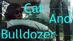 Cat And Bulldozer