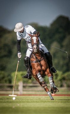 Think Polo is an easy sport?  HA, think again.