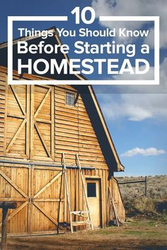 10 Important Things You Should Know Before Starting a Homestead