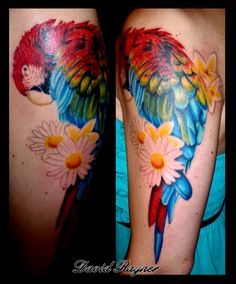 super awesome parrot tattoo