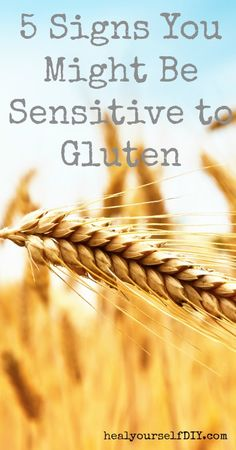 5 Signs You Might Be Sensitive to Gluten | www.healyourselfdiy.com