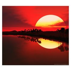 Download African Sunset wallpaper for Sony Ericsson Xperia Pro ❤ liked on Polyvore featuring backgrounds, moon, sun and filler