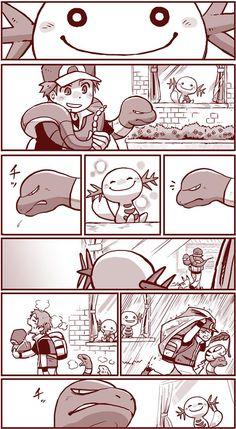 It reminds me Bakugou and Midoriya - Pokemon Pokemon Comics, Pokemon Memes, Pokemon Funny, Pokemon Team, Pokemon Fan Art, Izu, Pokemon Official, Pokemon Pictures, Cute Comics