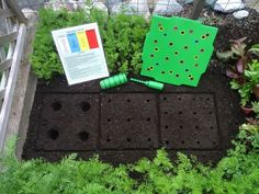 Square Foot Gardening Layout so Easy with the Seed Square!