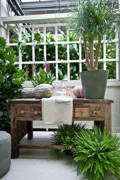 Il connubio perfetto: mobili antichi e piante per rendere unica la tua #casa.