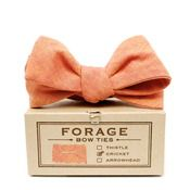 Image of pumpkin {bow tie} Pumpkin Images, Preppy, Finding Yourself, Wedding Stuff, Wedding Ideas, Bows, Alma Mater, Mens Fashion, Bow Ties
