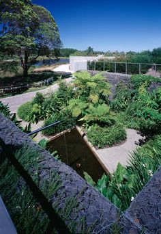 We are an award winning Sydney-based landscape architecture practice that provides a full range of services with an emphasis on the construction of high quality design Architecture Courtyard, Landscape Architecture, Penang, Public Garden, Botanical Gardens, Construction, Design, Building, Modern