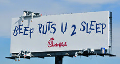 Chicken With a Beef: the Untold Story of Chick-fil-A's Cow Campaign | Adweek