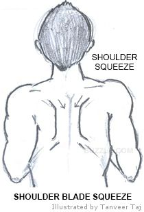 Proper exercise of the rhomboid muscles is important so that your shoulder blades move smoothly.