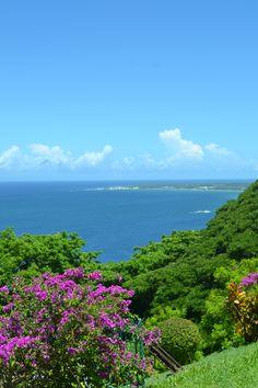 Trinidad and Tobago - Tobago #Caribbean #IslandLife, Where To Go In The Caribbean, Caribbean destinations, Caribbean islands vacations, best Caribbean islands for couples, top 10 Caribbean islands, Caribbean islands map