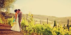 Viansa Winery and Vineyards Weddings | Get Prices for Napa/Sonoma Wedding Venues in Sonoma, CA