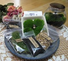 DIY Terrarium Kit: Here is a do it yourself terrarium kit that I have assembled that is very easy and fun to make. This kit comes complete with a glass jar with a metal lid. I will send full assembling and care instructions along with your purchase. This kit will include mosses, new organic soil, charcoal (charcoal filters your terrarium and keeps it fresh)