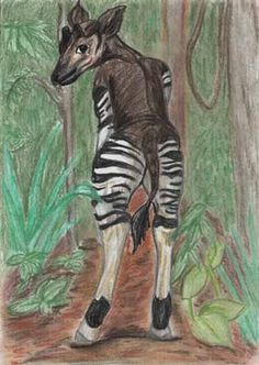 An okapi drawing from somebody.