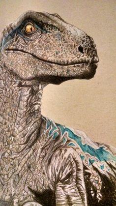 Blue velociraptor colored pencil drawing