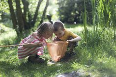 Looking at the pond life royalty-free stock photo Little Boy And Girl, Little Boys, Boy Or Girl, Pond Life, Stock Foto, Simple Pleasures, Our Kids, Cute Wallpapers, Life Is Good