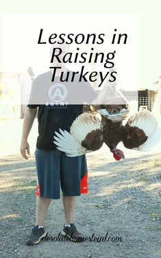 Lessons we learned about raising turkeys. Number Turkeys are NOT chickens. They are both poultry, but they have a few important differences. Backyard Poultry, Backyard Farming, Chickens Backyard, Backyard Patio, Chicken Coop Kit, Portable Chicken Coop, Keeping Chickens, Raising Chickens, Turkey Farm