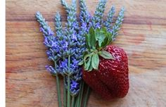 Uplift and Calm Your Senses with Lavender