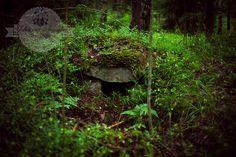 Hamarijärven rannalla olevan grillauspaikan läheisyydessä sijaitsee yksi Salon alueelta löytyneistä ryssänuuneista   http://www.naejakoe.fi/luontojaulkoilu/hamarijarven-ryssanuuni-ja-grillipaikka/