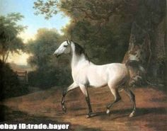 """Hand Paint Repro Art Oil Painting White Horse in a Pasture on canvas 24""""x36"""" #ClassicalArt"""