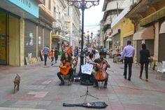 """ARTE URBANO - """"…yo creo que por medio de la cultura es que se puede rescatar los pueblos, es una de las propuestas que yo tengo para cambiar la realidad en este país, la ignorancia, la falta de cultura, que haya arte en las calles, que la gente conozca, y descubra lo que es la música clásica, vea lo que es el country, vea lo que es el blues, el flamenco, porque por ejemplo aquí no hay flamenco, pero una idea que yo tengo es lo del intercambio cultural."""" - Camilo Rijo Fulcar"""