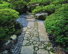 idée d'allée de jardin en pierre naturelle entourée de galets gris et arbustes
