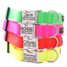 Personalized Neon Dog Collar -- 4 Fluorescent Colors with info Engraved on the Buckle via Etsy
