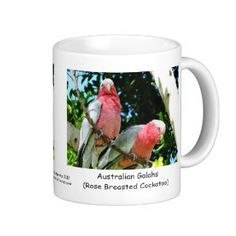 Australian Galah (Rose Breasted Roseate Cockatoo) Classic White Coffee Mug - Australian Wildlife.  Click on photo to view item then click on item to see how to purchase that item.