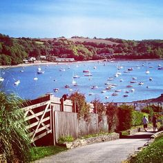 Today's a little soggy outside but here's our throwback Thursday - last weekend on the #Helford, #Falmouth #Cornwall