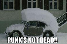 Punk's not dead!! … via http://www.drlima.net