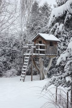 Winter Wonderland - Treehouse